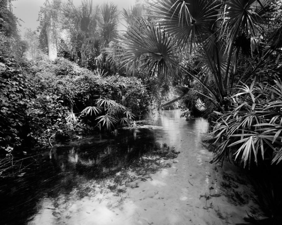 Richard prefers to use black and white film as he's photographing the wilds of Florida from his Sea Eagle 370.