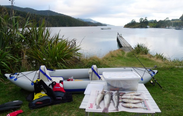 "Alison reported on the Polglase's great day of fishing in their FastTrack. ""Elaine Bay is in the Marlborough Sounds. There are 3 blue cod and 4 spotties in this photo. These were all caught on rods before we bought the ""Happy Hooker"" set line.  Cod are sort after, but people usually throw spotties back or use them for bait.  However they are quite sweet fish and I like them, but they are small and the bones are fine, hence most people throw them back.  We like them smoked also. We have a quick 20 minute hot smoker about the size of a meat roasting pan, so that gets packed in the campervan under the bed also."""